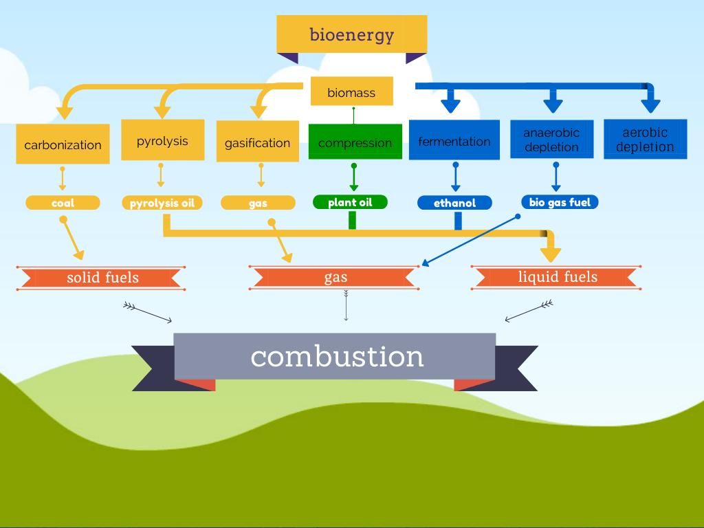 bioenergy_infographic