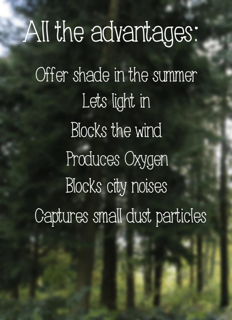 vertical-forest-advantages