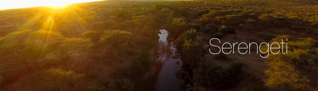 serengeti flight